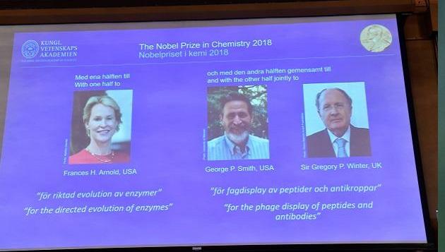 Premio Nobel de Química a Arnold, Smith y Winter por el desarrollo de proteínas