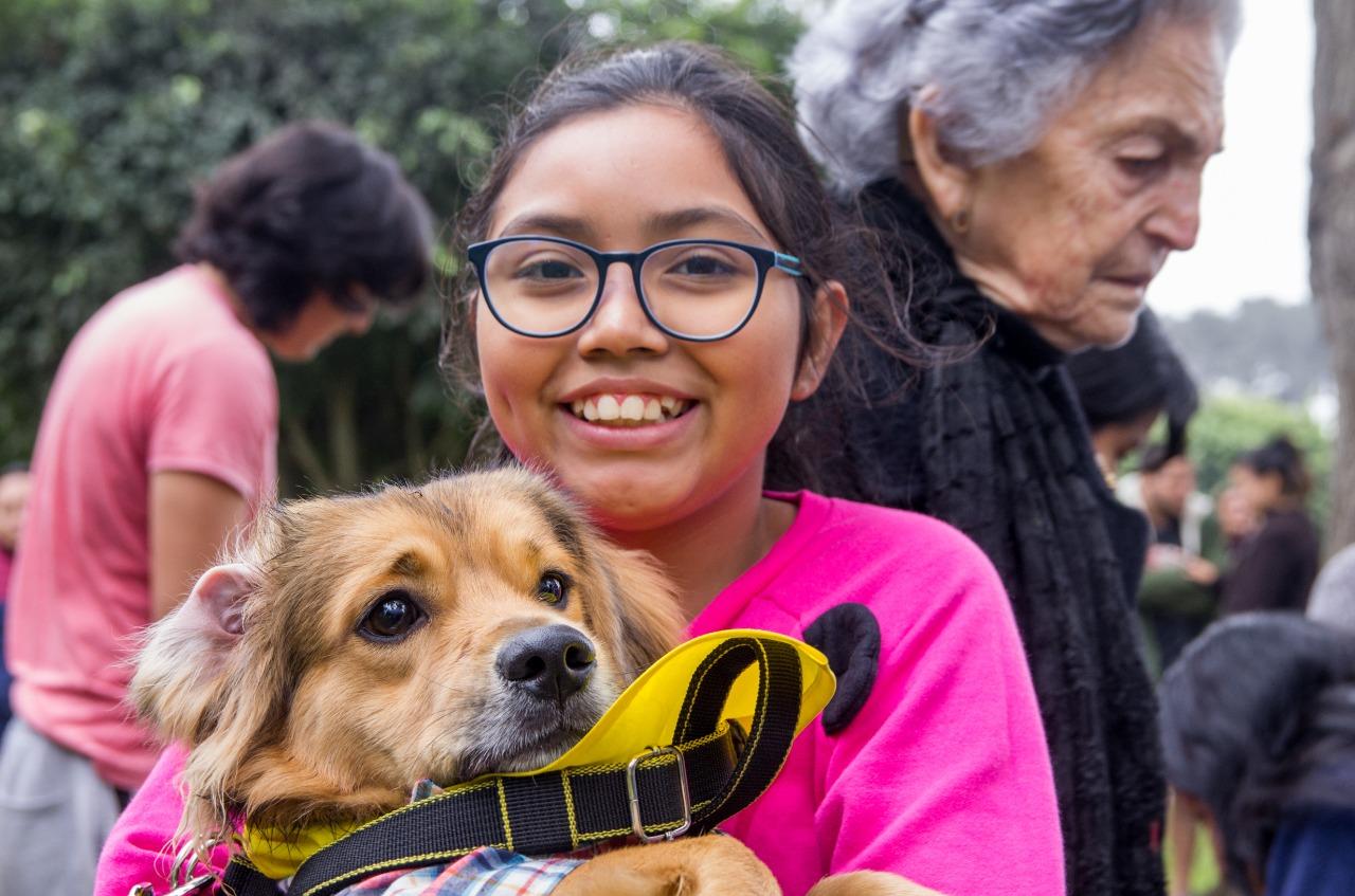 Surco: mil perros abandonados será esterilizados gracias a la 'Caninatón'
