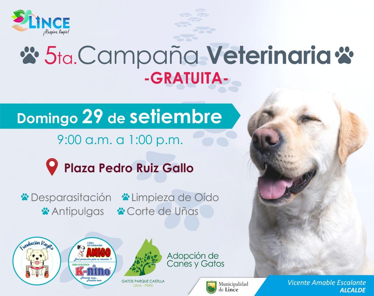Este evento contará con la presencia de veterinarios experimentados que brindarán los servicios de desparasitación, aplicación antipulgas, corte de uñas, limpieza de oídos.  (Foto: Municipalidad de Lince)