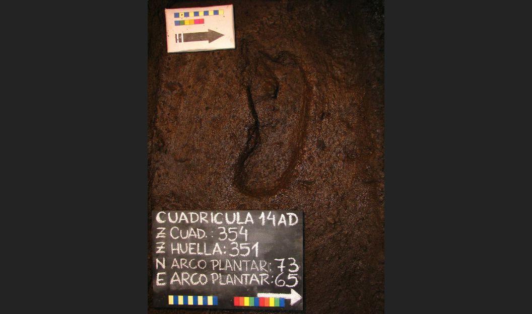 Chile: Hallan la huella de un ser humano más antigua de América. (Reuters)