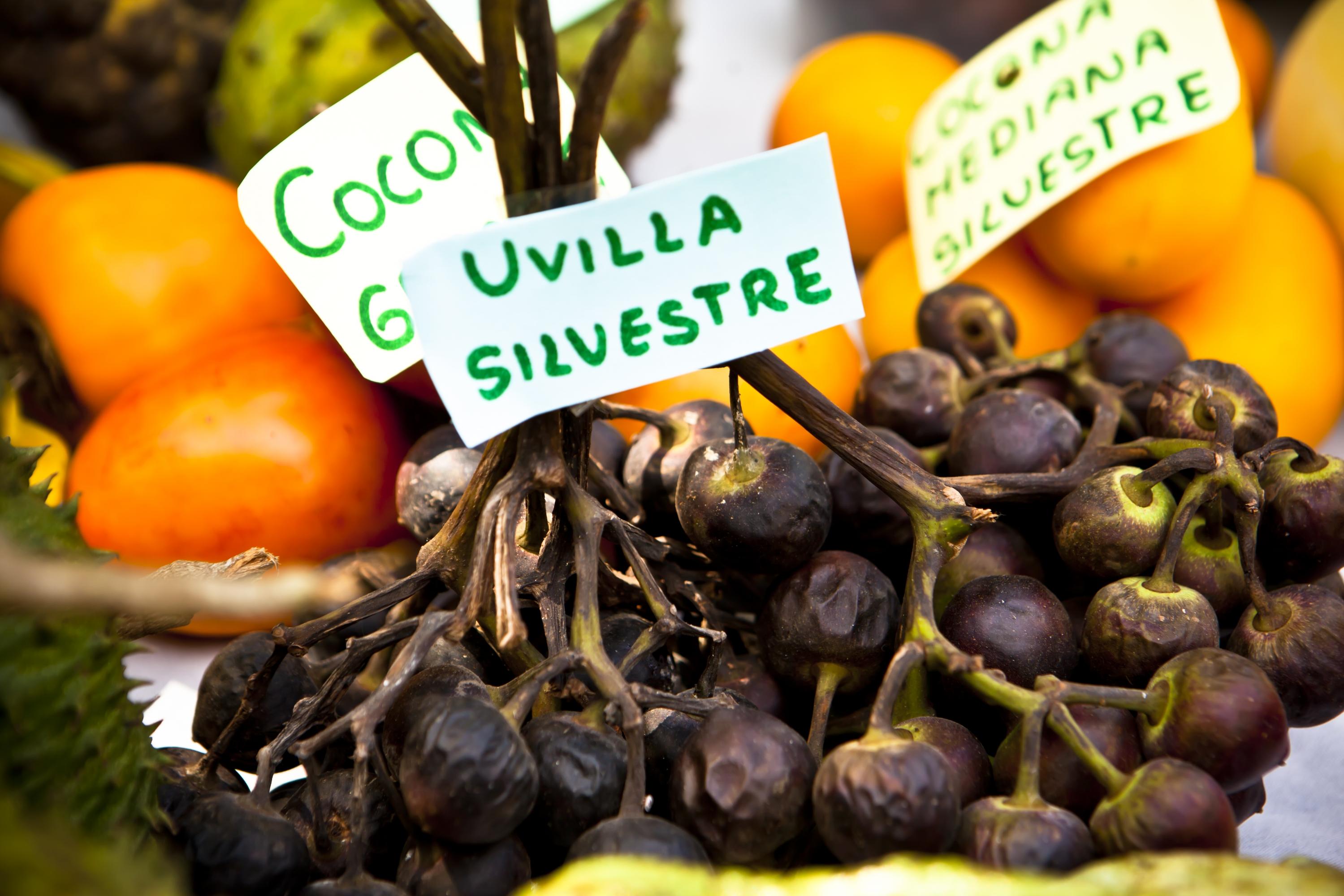 Es recomendable que pruebas las frutas autóctonas, una experiencia única. (Foto: GEC)