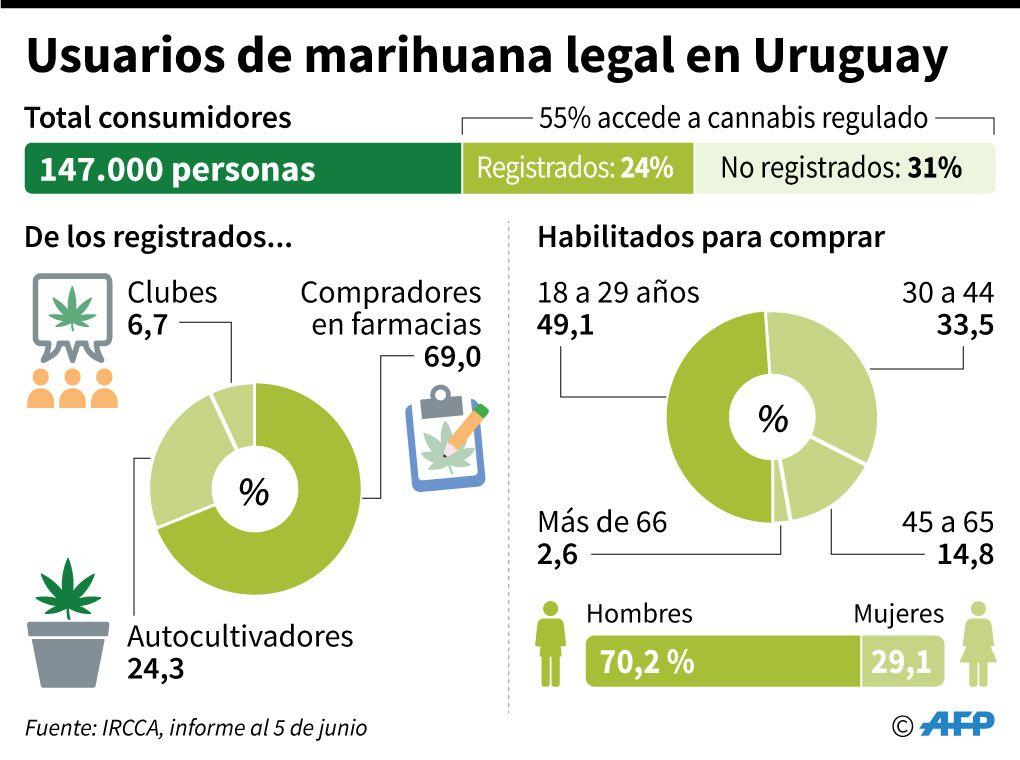 Usuarios de marihuana legal en Uruguay