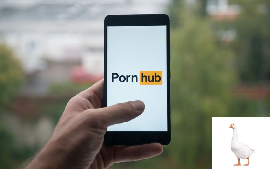 Cuando YouTube cae, PornHub aumenta su tráfico