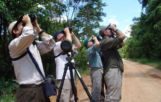 Perú buscará el tricampeonato mundial de avistamiento de aves