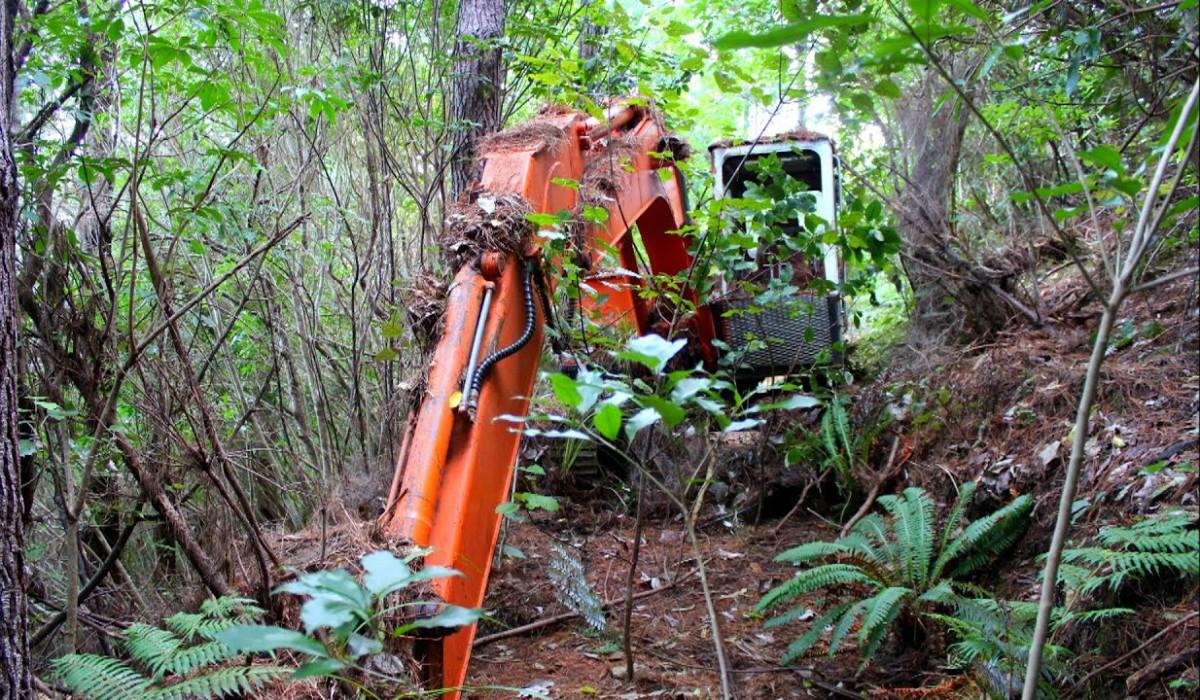 El asombroso secreto que ocultaba en su interior una excavadora abandonada en medio de un bosque