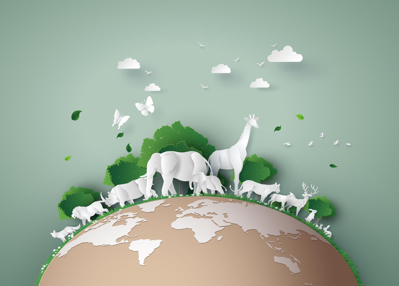 Sencillas cosas que puedes hacer en casa para ayudar a la educación ambiental