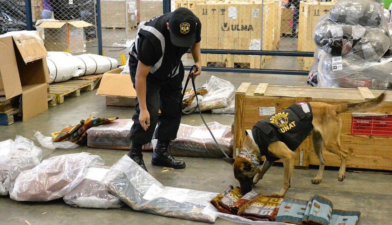 Sunat: canes detectores contribuyeron a incautar más de 6.3 toneladas de drogas desde 2017
