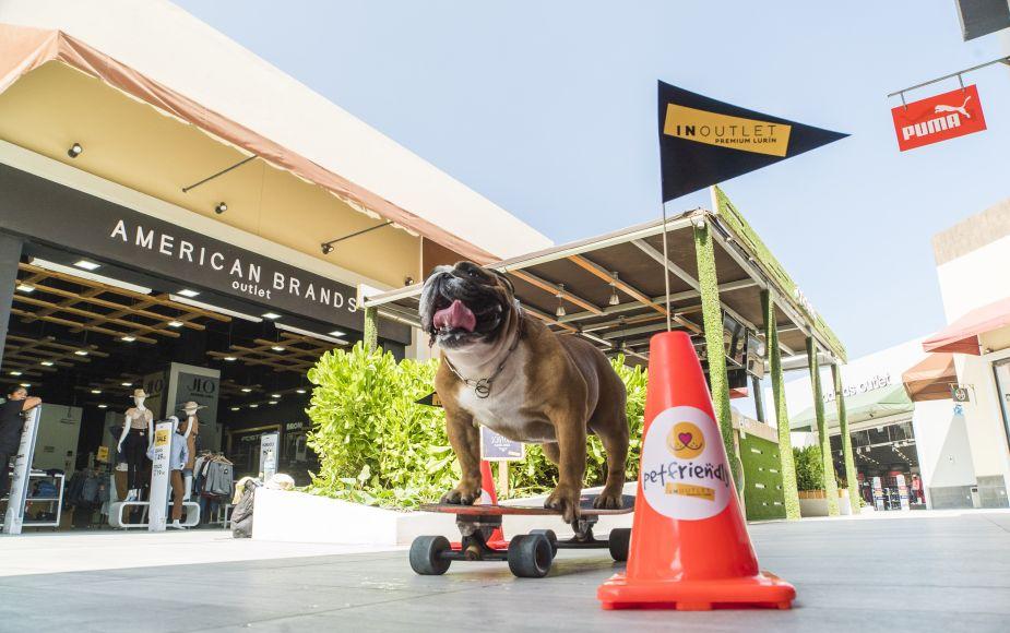 Lurín: centro comercial celebra un año como 'pet friendly'