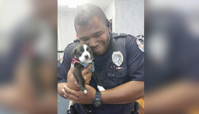 Policía se dirigía a hacer arresto en albergue y terminó adoptando a un perrito