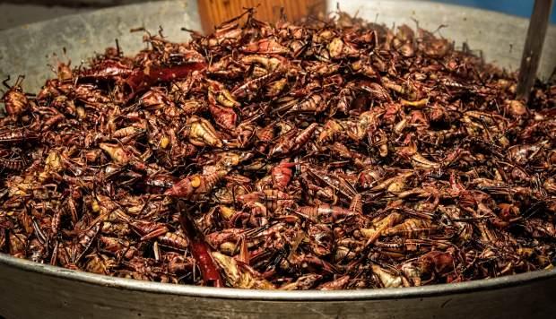 Los chapulines (saltamontes) se cocinan con ajo en el Mercado de San Juan en la Ciudad de México. Es muy consumido en la gastronomía mexicana. (Foto: AFP)