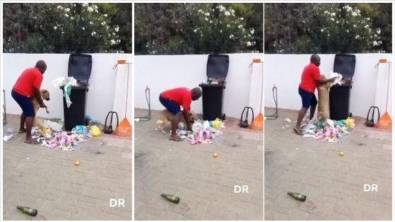 ¡Buen ejemplo! Hombre le enseña a su mascota a botar la basura | VIDEO