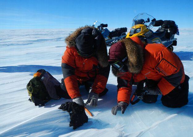 Gran meteorito es descubierto en la Antártida