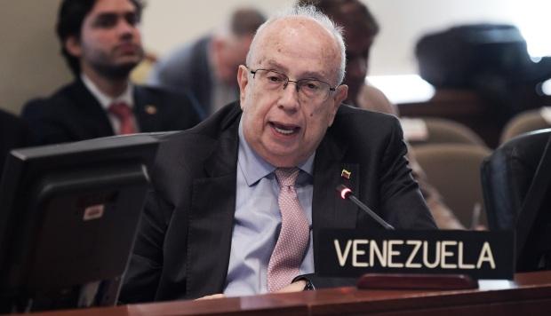 Delegado de Guaidó ante la OEA denuncia operativa de Hezbolá y EI en Venezuela