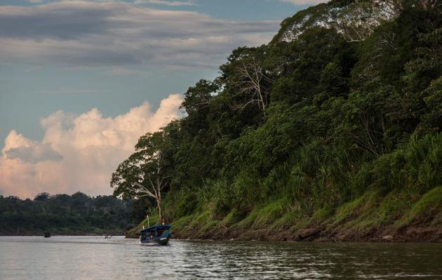 Tambopata Libre: la campaña que reúne a los peruanos contra la minería ilegal