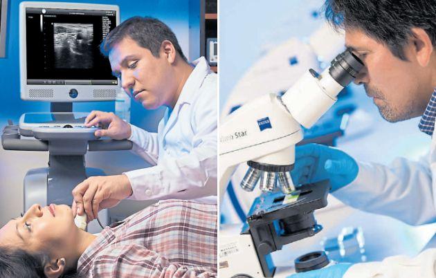 Nueva carrera: Ingeniería Biomédica para innovar la medicina
