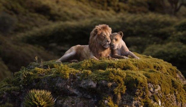 Disney lanza nuevas imágenes promocionales de 'El Rey León'   FOTOS