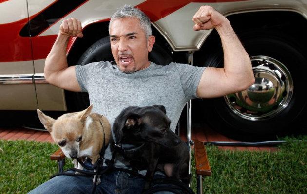 César Millán lanza su línea de comida para perros en Perú