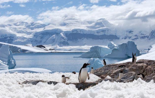 Advierten sobre aumento del nivel de los océanos por el derretimiento de hielo en la Antártida