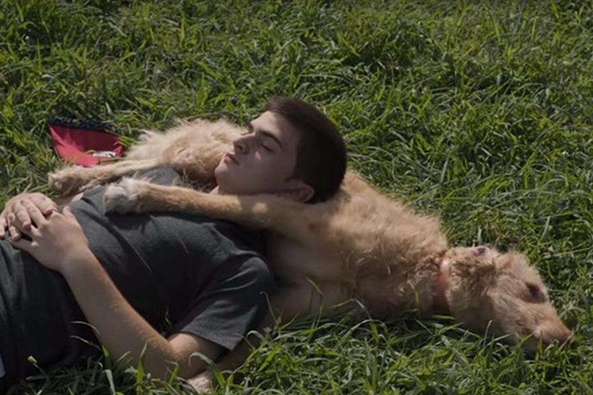 Una película que llena el corazón en días tristes