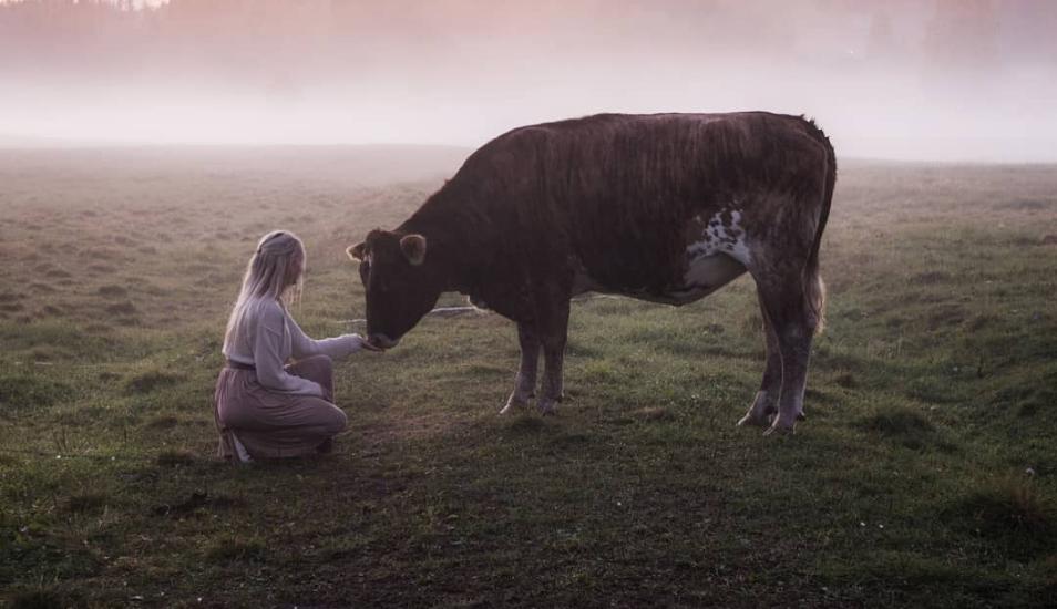 Este antiguo método para llamar al ganado dejó boquiabierto a más de uno en Internet