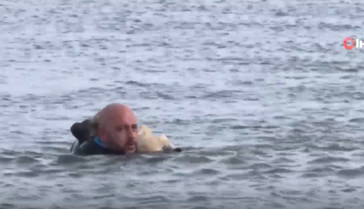 Policía salva a un perro atrapado en un lago congelado y se gana la admiración de miles de usuarios