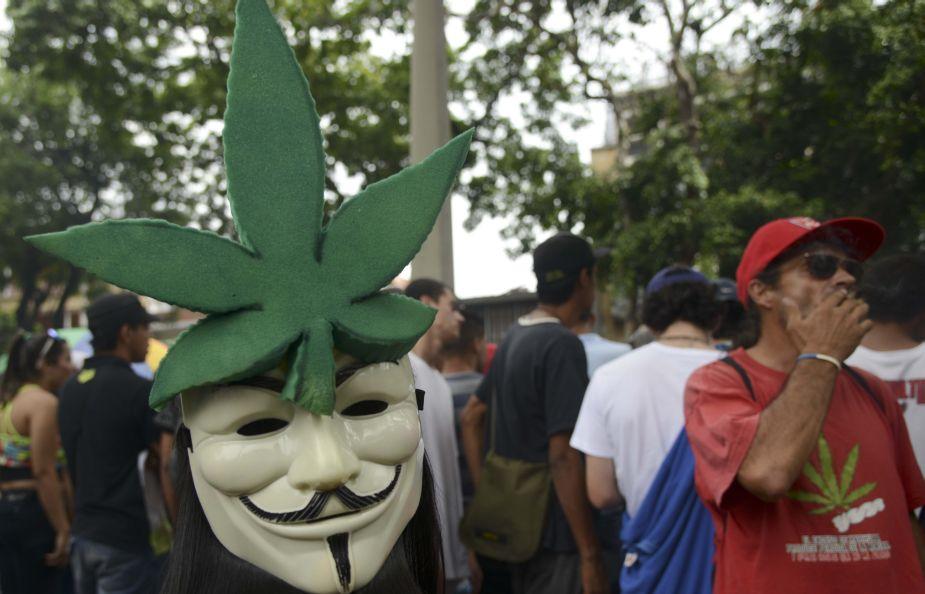 Industria de la marihuana genera 100 mil empleos