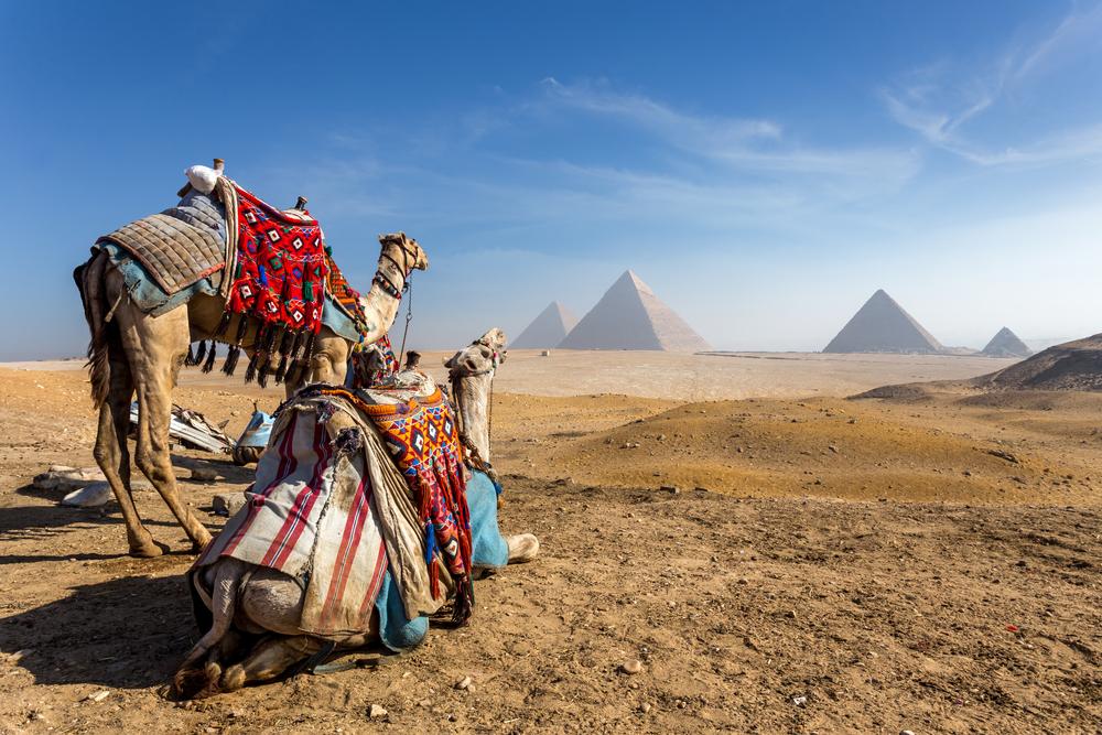 Día de África: conoce los 4 países más representativos de este continente