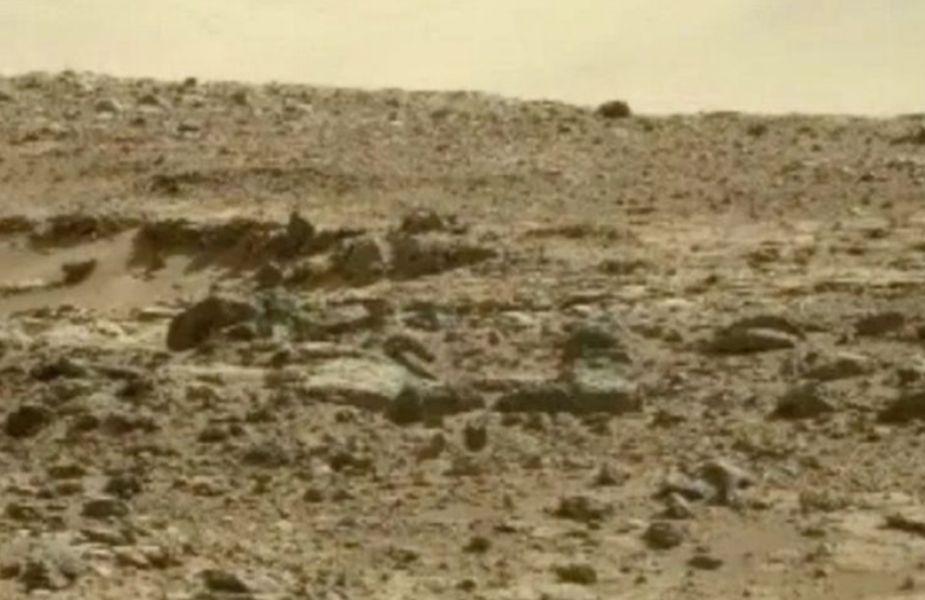 ¿Qué ves? Cazador de ovnis aseguró que esta foto prueba que hay vida en Marte