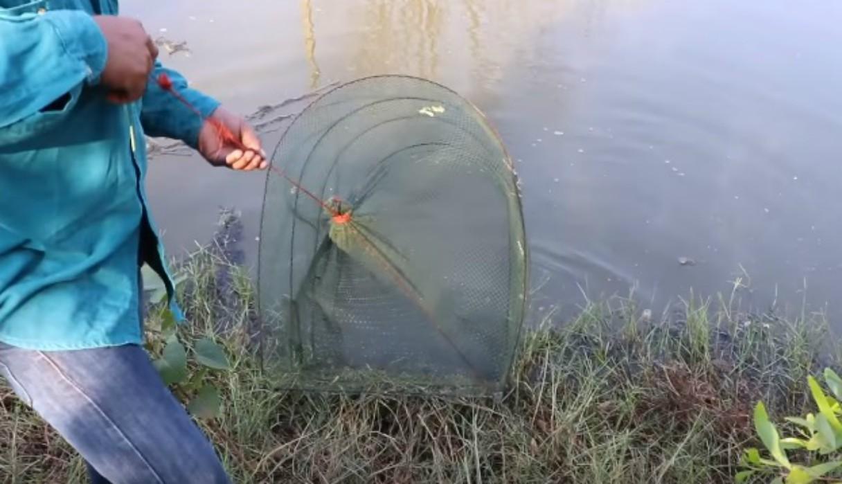 Pescador retira su red de un estanque y se topa con una pitón de 4 metros de largo