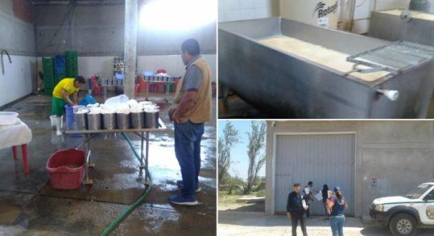 Lambayeque: Clausuran fábrica de quesos por insalubridad y contaminación ambiental en Chiclayo