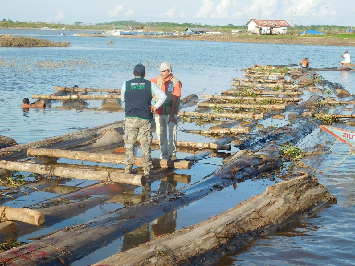 Ucayali: incautanS/300 mil en maderade presunto origen ilegal