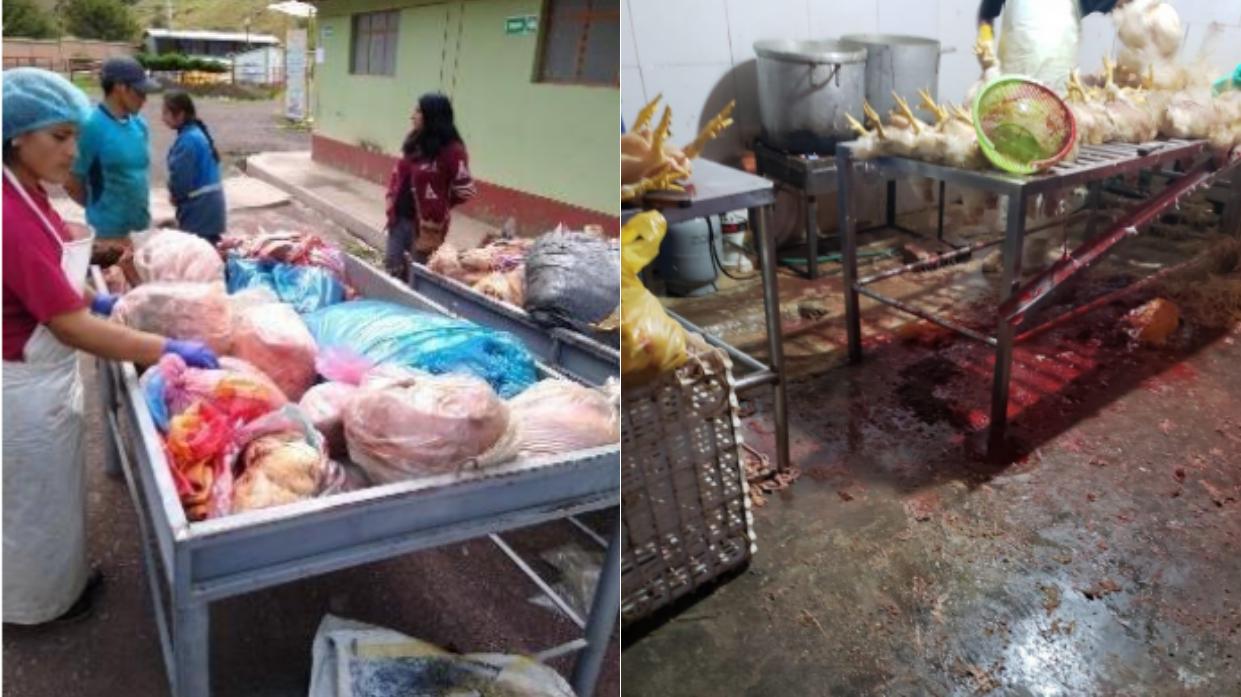Independencia: Decomisan más de 5 toneladas de carne de aves en condiciones insalubres - Diario Perú21