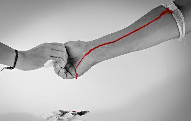 Campaña digital 'Dona sangre, dona vida' promueve donación voluntaria de sangre