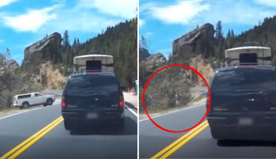Olvidó lo que todo conductor debe hacer siempre al detener su vehículo y sufrió las terribles consecuencias